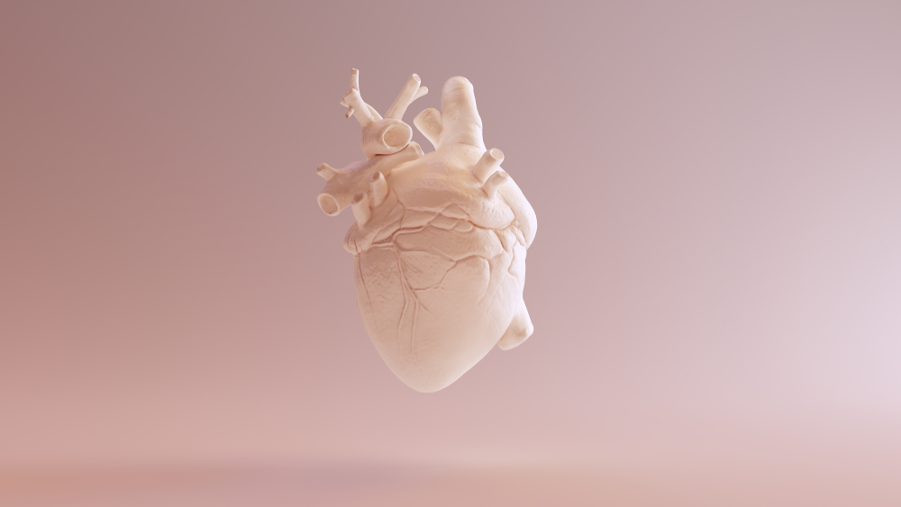 Scientists create first 3D heartusingpatient'sown cells