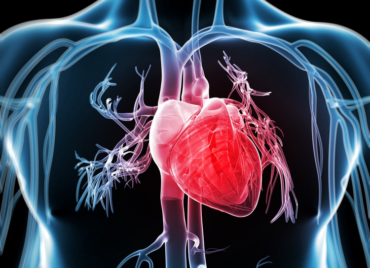 FDA approves new treatments for heart disease caused by a serious rare disease, transthyretin‑mediated amyloidosis