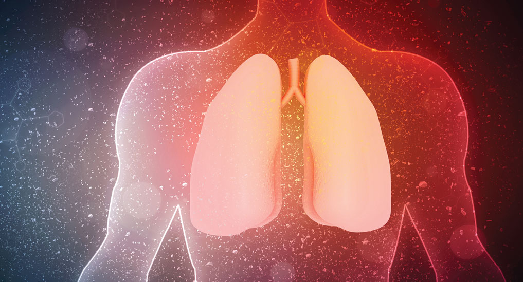 US FDA approves 4DMedical's lung imaging tool