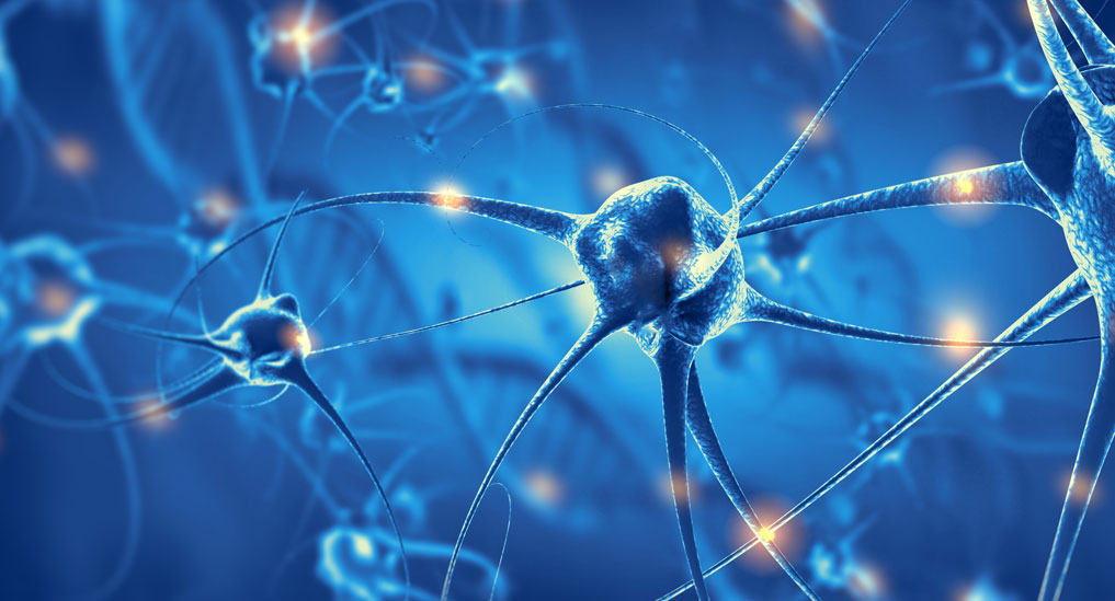 Blood test for a specific tau protein could detect Alzheimer's