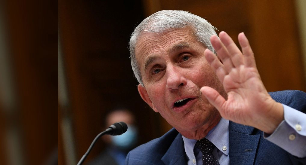 COVID-19 vaccine may be a reality by year-end: Anthony Fauci