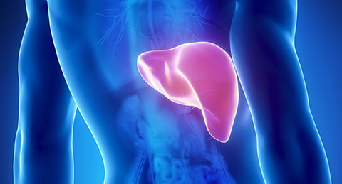 Apollo hospitals and DMIMS join hands to offer liver transplant program