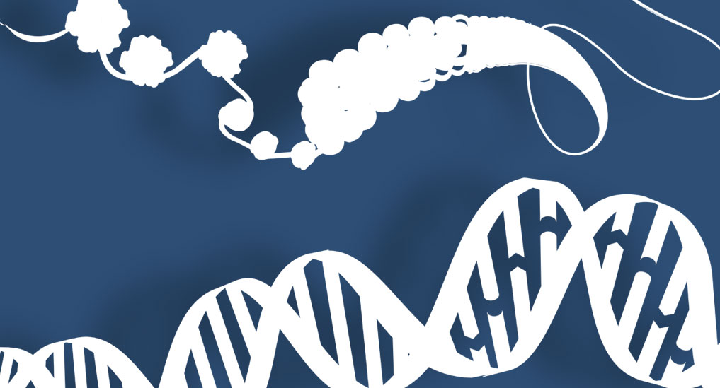 Study reveals genetic features of rhabdomyosarcoma that may improve risk stratification