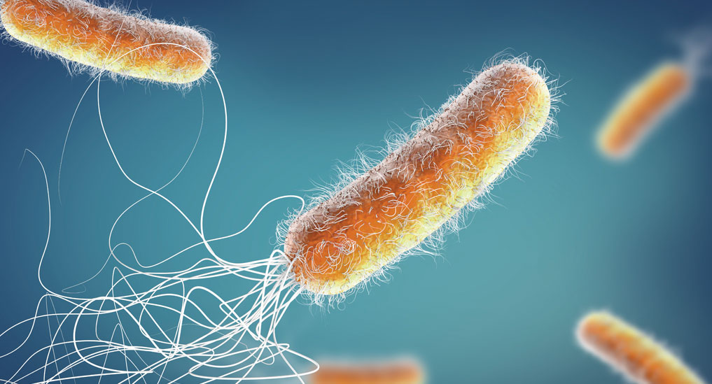No new antibiotic in sight to tackle resistance: WHO report